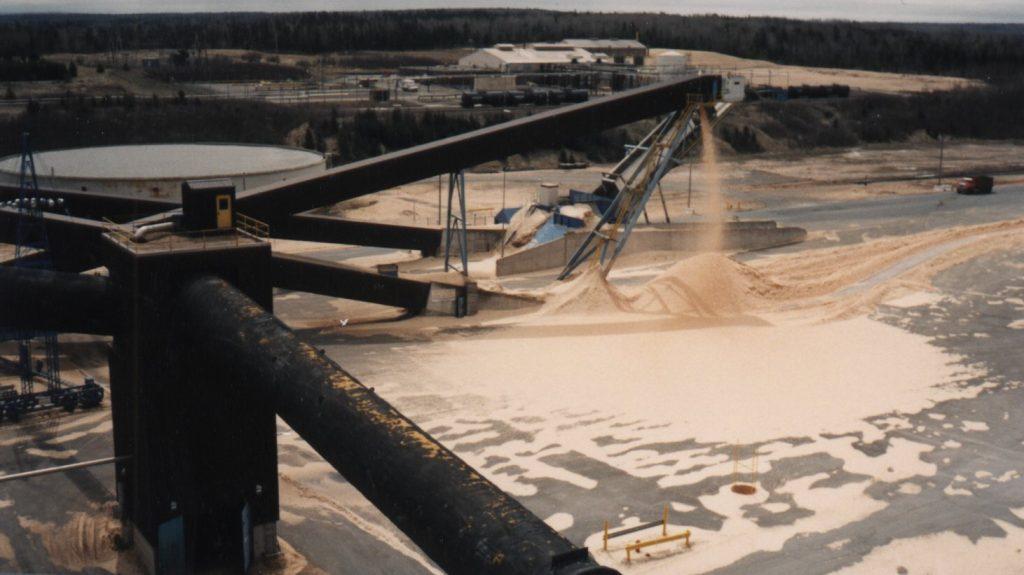 Biomass materials handling